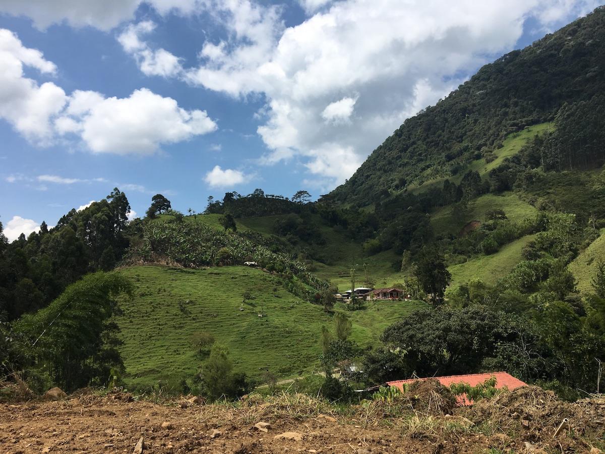 jardin colombia