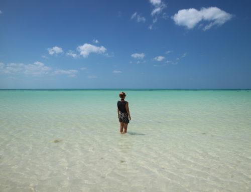 Rondreis Yucatán: onze highlights in Yucatán, Mexico
