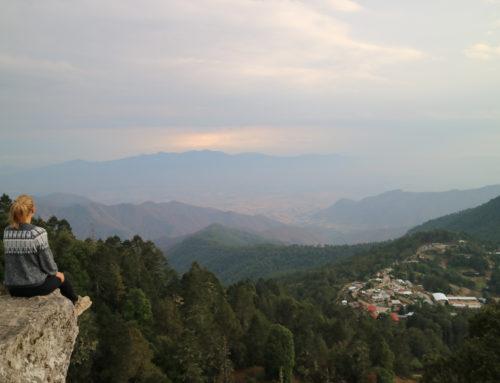 Onze highlights in Oaxaca, de mooiste staat van Mexico