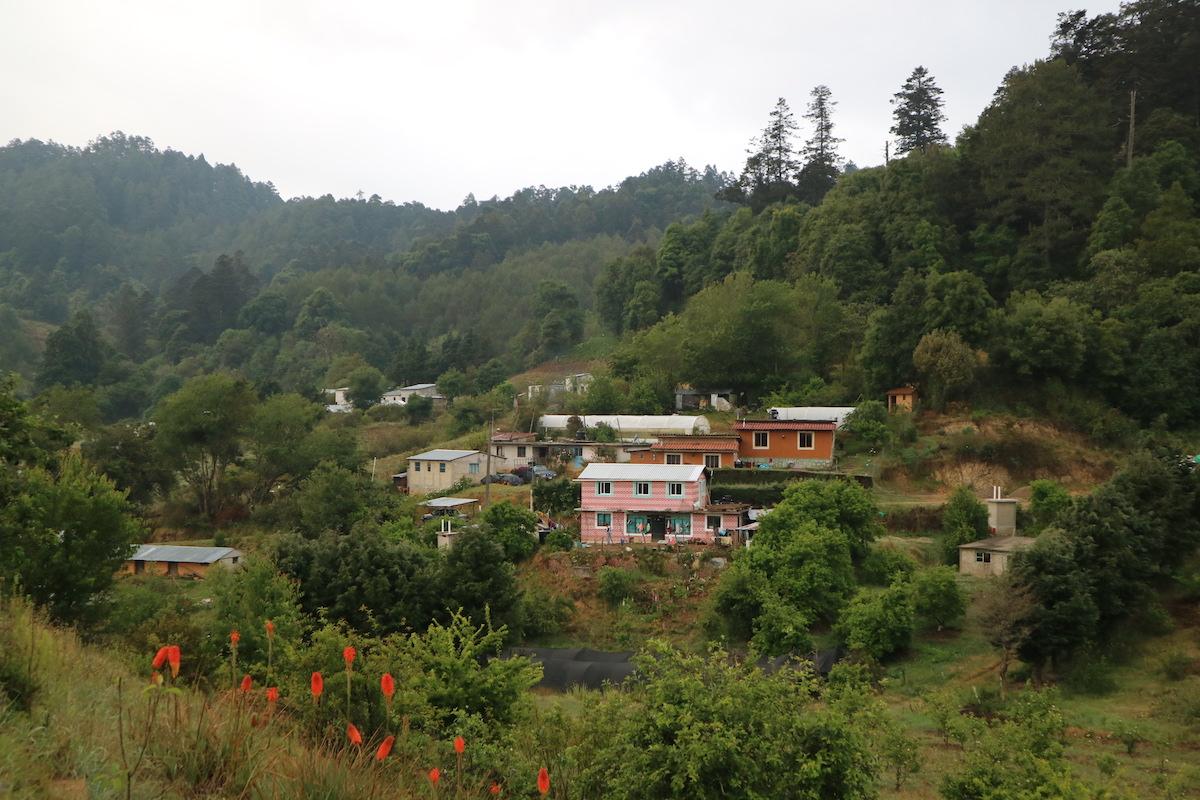 la neveria dorpje oaxaca