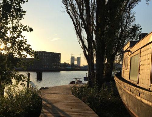 Een dag in Amsterdam Noord: 9 tips