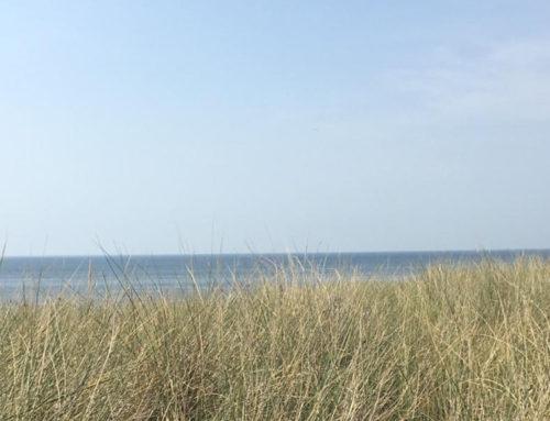 De mooiste en leukste stranden van Nederland