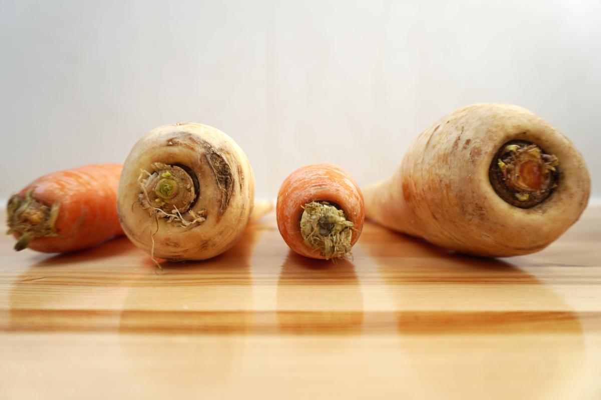 wortel en pastinaak