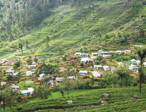 De leukste tips voor Haputale, Sri Lanka